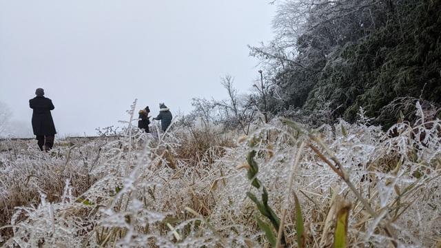 Cận cảnh băng giá ở Cao Bằng, Lạng Sơn trong giá lạnh dưới 0 độ C  - 6
