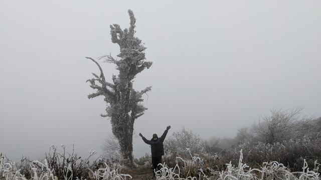 Cận cảnh băng giá ở Cao Bằng, Lạng Sơn trong giá lạnh dưới 0 độ C  - 7