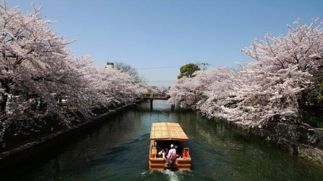 Những trải nghiệm đậm màu truyền thống du khách nên tận hưởng khi đến Nhật - 2