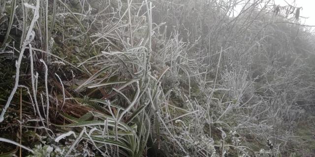 Cận cảnh băng giá ở Cao Bằng, Lạng Sơn trong giá lạnh dưới 0 độ C  - 4