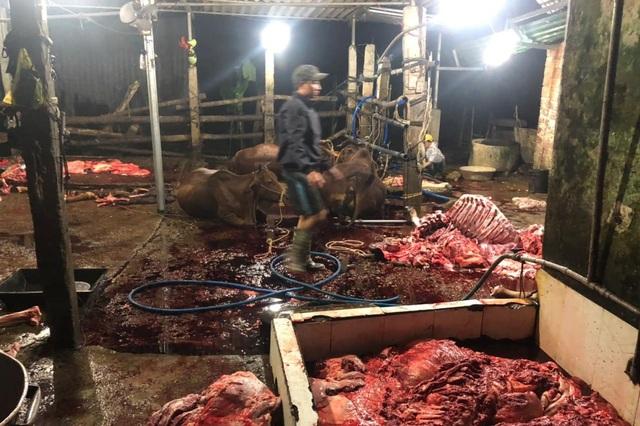 Kinh hãi cảnh bò bị bơm nước, giết thịt trên nền nhà dơ bẩn - 3