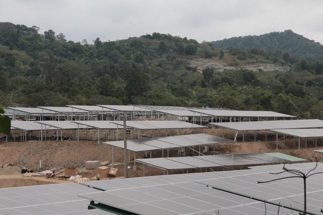 Rà soát, xác minh rõ vụ trá hình dự án nông nghiệp làm điện mặt trời - 1
