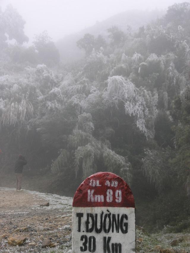 Sa Pa đông cứng trong băng tuyết, đỉnh Khau Phạ cũng hóa đá - 9