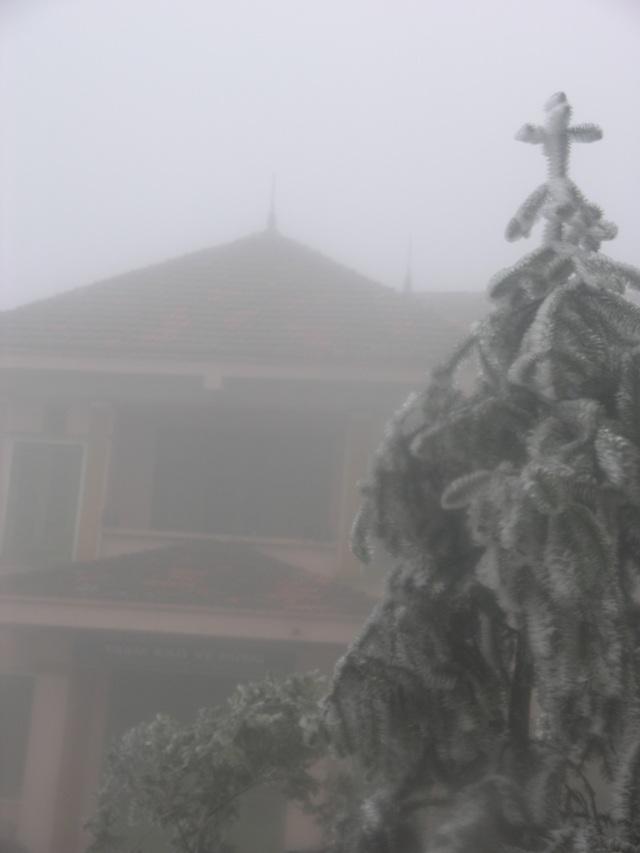 Sa Pa đông cứng trong băng tuyết, đỉnh Khau Phạ cũng hóa đá - 6
