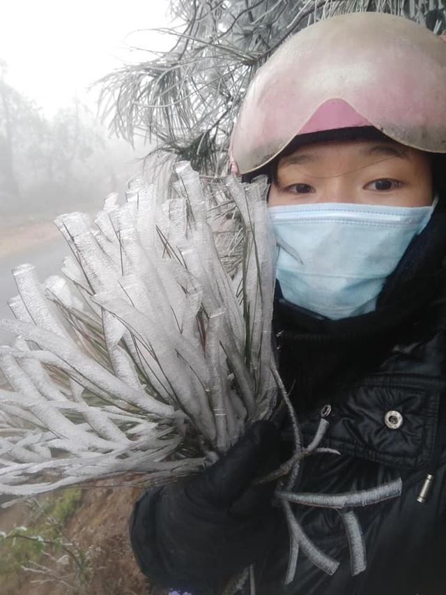 Sa Pa đông cứng trong băng tuyết, đỉnh Khau Phạ cũng hóa đá - 16