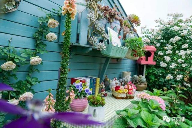 Trồng hoa trên sân thượng, cô gái tạo ra khu vườn cổ tích vạn người mê - 2