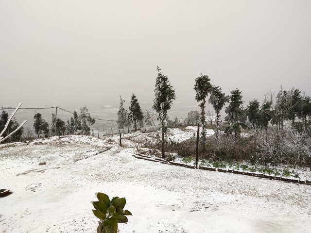 Heavy snowfall in Y Ty, the landscape covered in white like Europe - 2