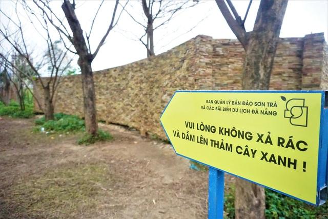 Xót xa con đường mùa đông ở Đà Nẵng bị giẫm đạp tan hoang - 10
