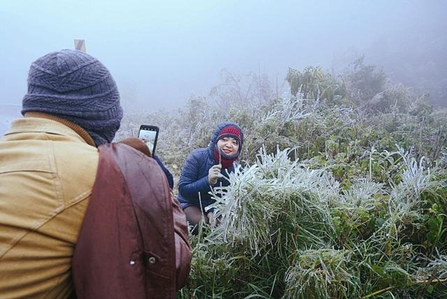Tuyết rơi trắng xóa ở Lào Cai, du khách đua nhau khoe hình check-in - 12