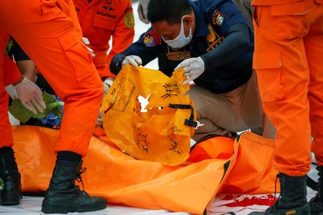 Xác định được vị trí hộp đen, Indonesia chạy đua tìm máy bay rơi - 6