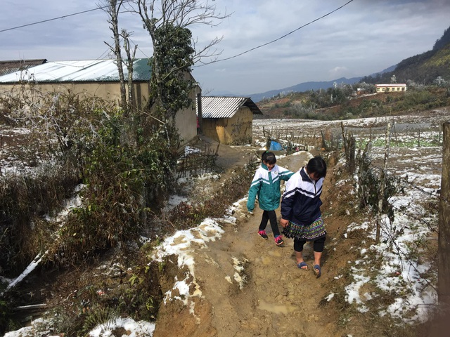 Hình ảnh đẹp nhưng buồn sau trận mưa tuyết ở vùng cao Ý Tý - 3