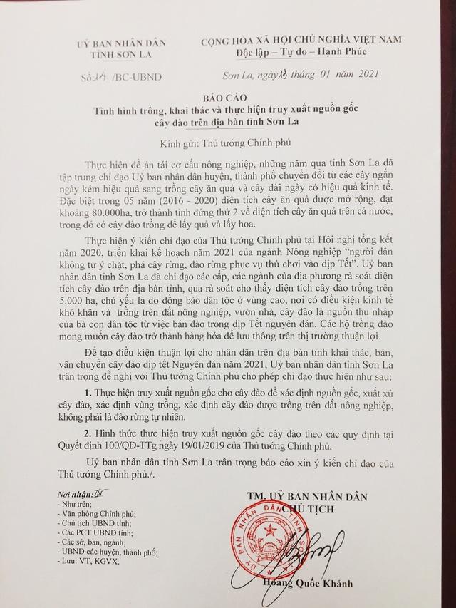 Sơn La đề nghị Thủ tướng cho phép truy xuất nguồn gốc cây đào - 1