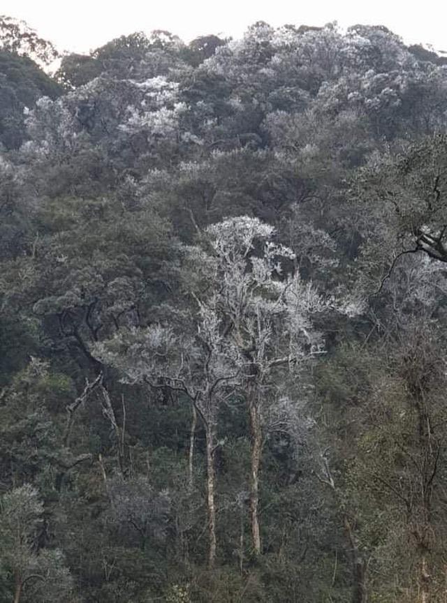 Tuyết rơi ở biên giới xứ Nghệ - 2