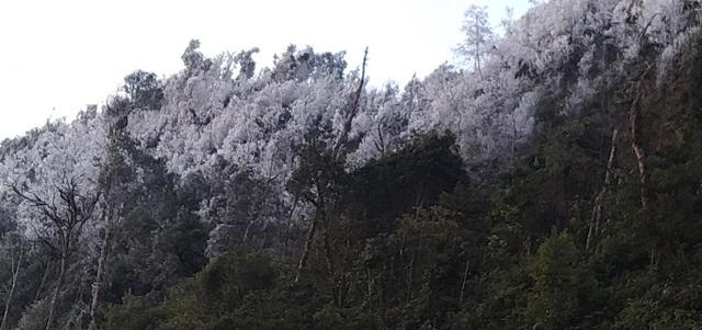 Tuyết rơi ở biên giới xứ Nghệ - 3