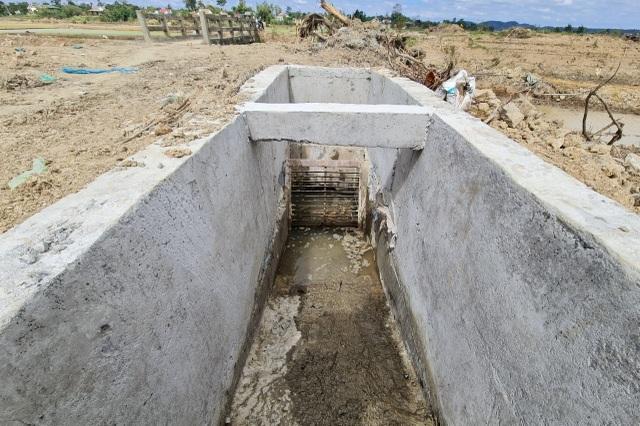 Cả trăm hecta lúa lo chết khát cạnh dự án chống hạn trăm tỷ - 7