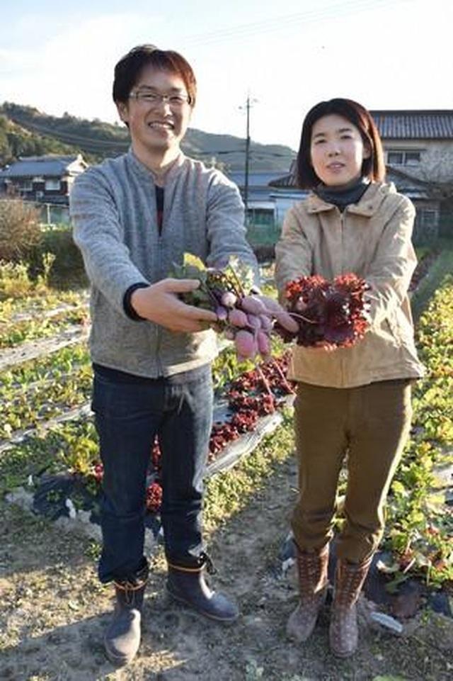 Những bó hoa rau đầy màu sắc của nông dân miền Tây Nhật Bản - 2