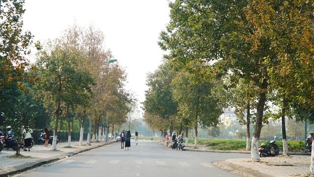 Con đường phong lá đỏ tuyệt đẹp lãng mạn như trời Âu ở Hà Nội - 3