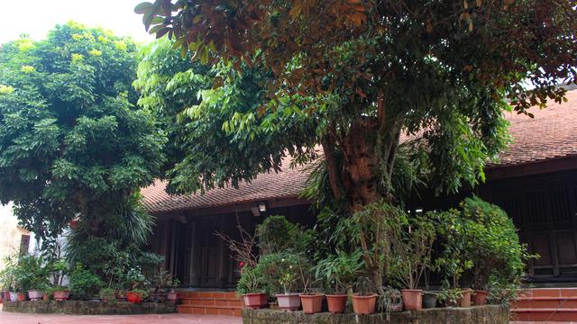 Nhà gỗ trăm tuổi chứa nhiều cổ vật quý của vị quan triều Nguyễn ở Hà Nam - 7