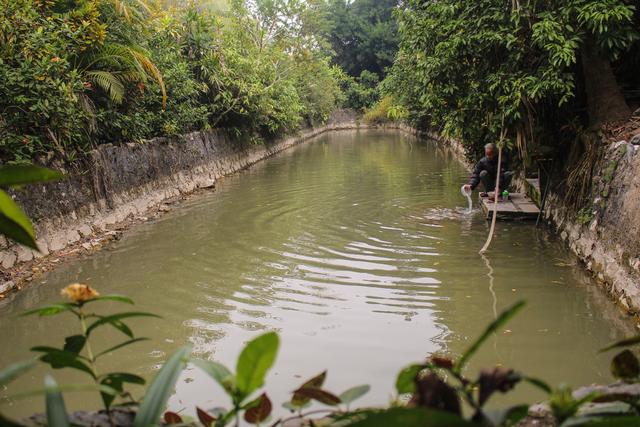 Nhà gỗ trăm tuổi chứa nhiều cổ vật quý của vị quan triều Nguyễn ở Hà Nam - 8