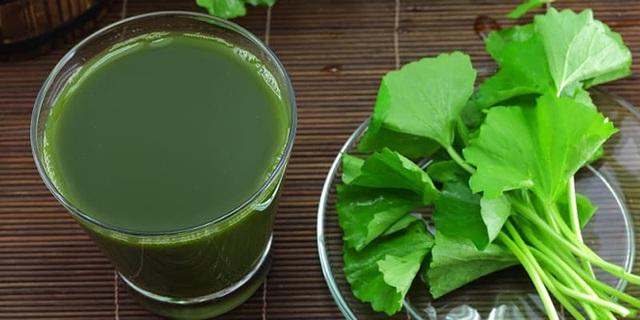 7 thức uống thanh nhiệt, giải độc gan cho ngày cuối tuần - 4