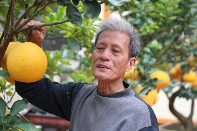 Cận Tết, lão nông thu hàng trăm triệu đồng nhờ cây có 7 thứ quả khác nhau - 9