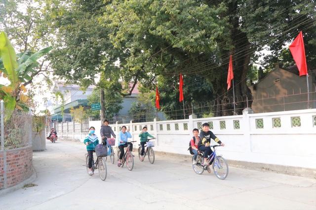 Cụ thị gốc chục người ôm không xuể sống qua 8 thế kỷ ở Ninh Bình - 10