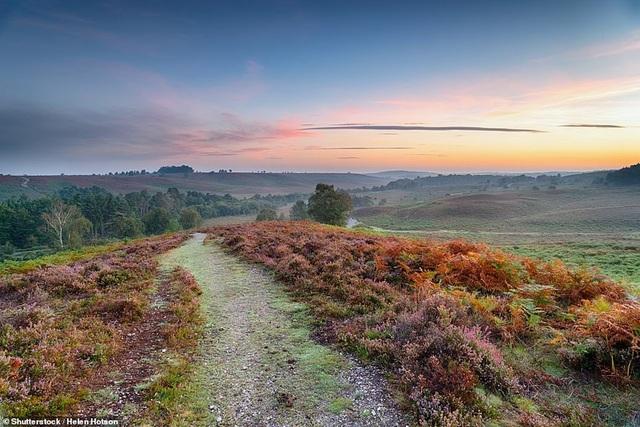Mê mẩn vẻ đẹp hoang dã và lãng mạn của vương quốc Anh - 11