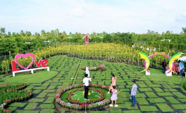 Vườn hoa hướng dương lớn nhất TP Sa Đéc mê hoặc người dân miền Tây - 3
