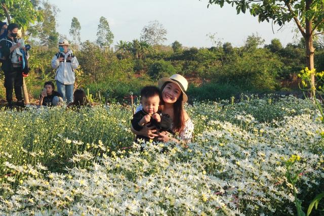 Hoa tam giác mạch, cúc họa mi khoe sắc trên Tây Nguyên - 12