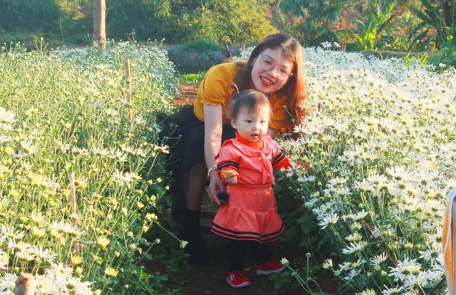 Hoa tam giác mạch, cúc họa mi khoe sắc trên Tây Nguyên - 9