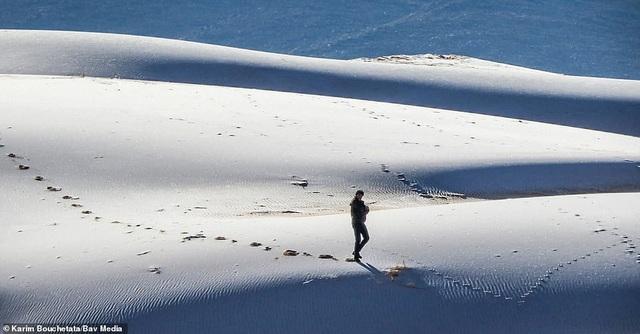 Băng tuyết bất ngờ phủ trắng sa mạc Sahara - 1