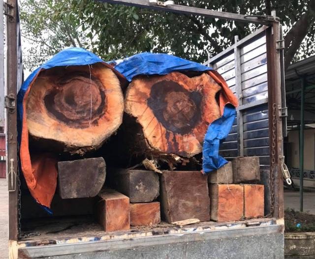 Bị phát hiện chở gỗ lậu, nhóm đối tượng vứt tang vật bỏ chạy - 1
