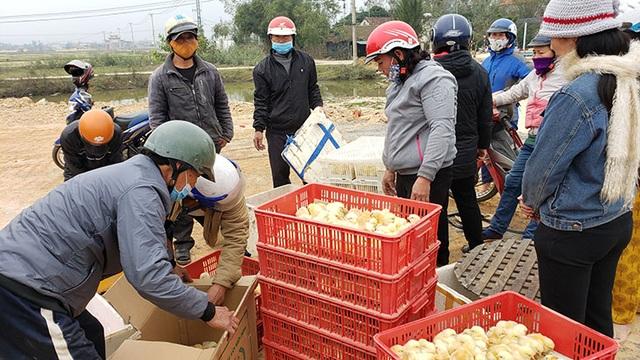 Hỗ trợ 37.000 con gà giống giúp người dân vùng lũ tái thiết cuộc sống - 1