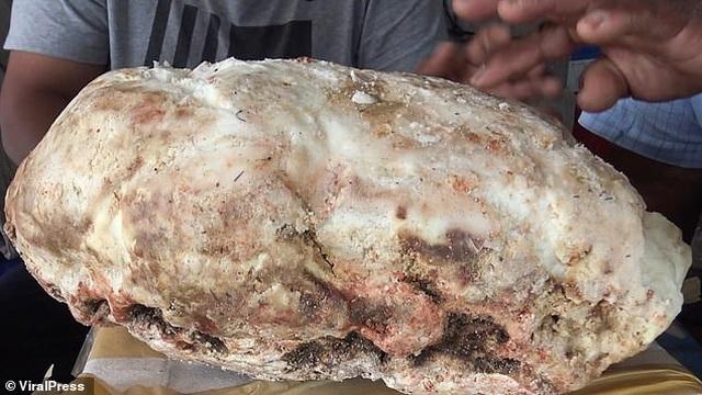 Ngư dân vô tình nhặt được khối chất nôn nặng 7 kg đáng giá cả gia tài - 2