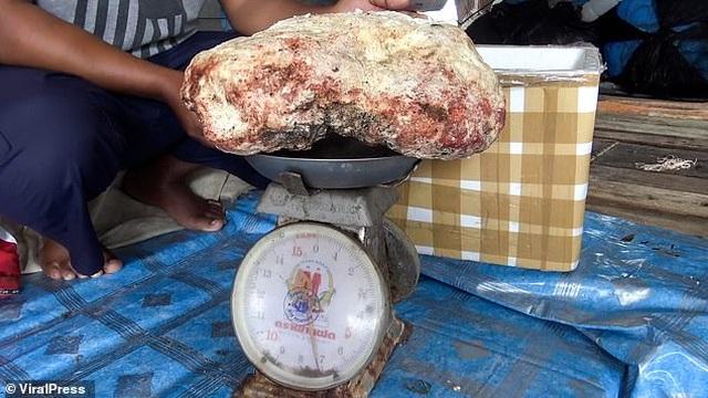 Ngư dân vô tình nhặt được khối chất nôn nặng 7 kg đáng giá cả gia tài - 3