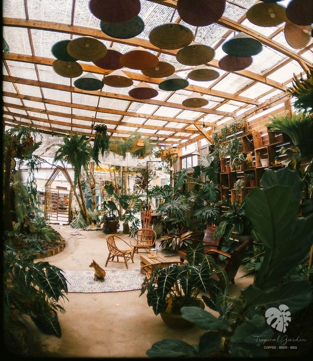 Rừng nhiệt đới thu nhỏ trong quán cà phê ở Đà Lạt - 4