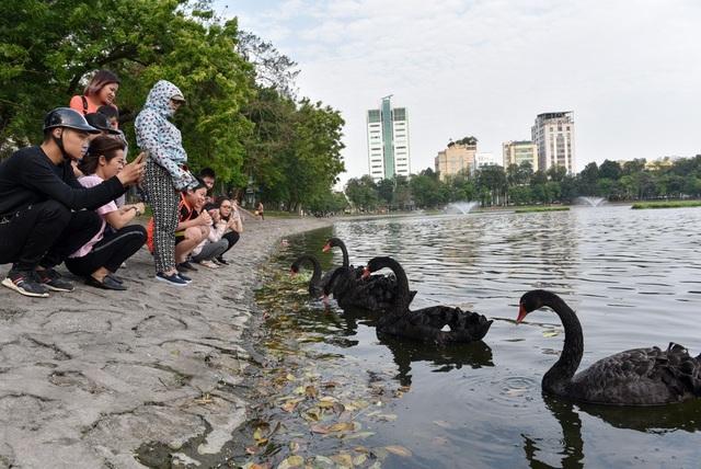Bí thư Hà Nội đề nghị tổ chức phố đi bộ quanh hồ Thiền Quang - 1