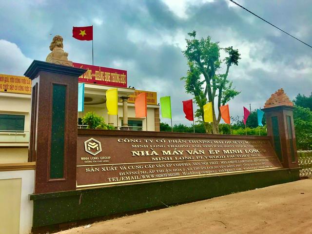 Công ty Minh Long đưa vào vận hành nhà máy sản xuất ván ép hiện đại - 2