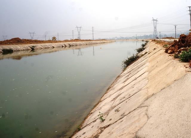Đánh cược tính mạng trên dòng sông chết - 5
