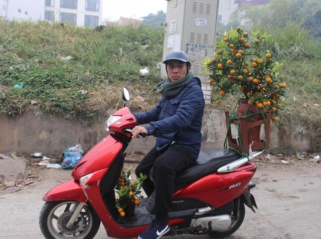 Người vận chuyển chạy sô, kiếm tiền triệu mỗi ngày nhờ chở cây cảnh - 5