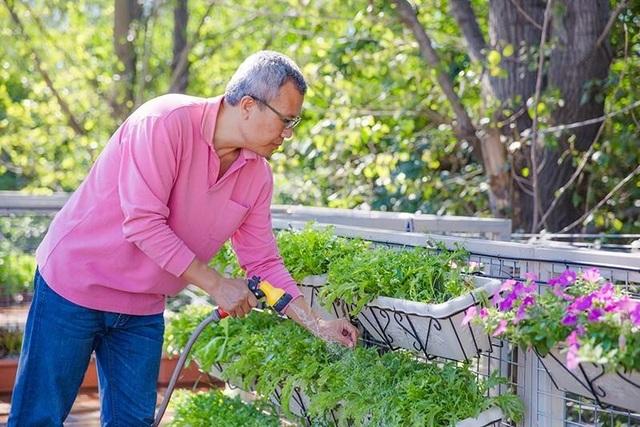 Người đàn ông xây nhà container tuyệt đẹp tặng vợ trồng rau, nuôi cá - 2