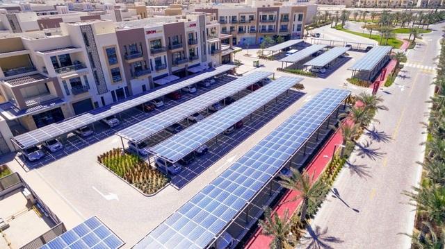 Cảnh trồng rau, nuôi gà trong thành phố xanh đầu tiên ở Dubai - 6