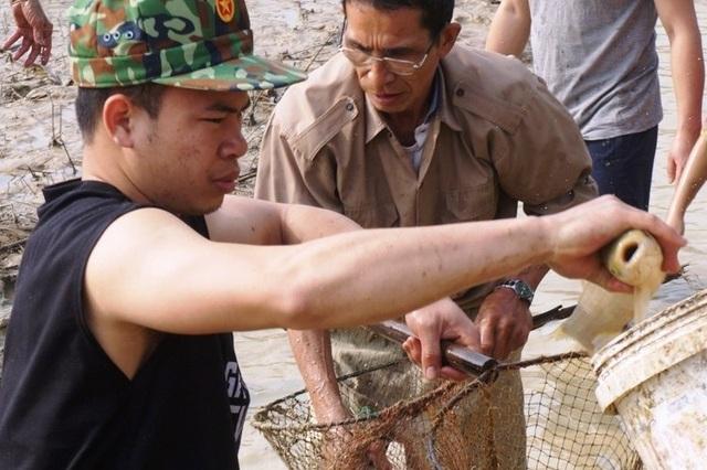 Giáp Tết, bội thu nhờ nuôi cá vụ 3 thay trồng lúa - 7