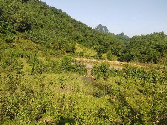 Giá đất nông nghiệp Hòa Bình siêu mềm, chỉ vài chục nghìn đồng/m2 - 2