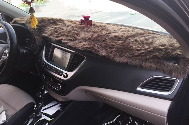 Trang bị thảm táp lô cho ô tô: Lợi bất cập hại - 2