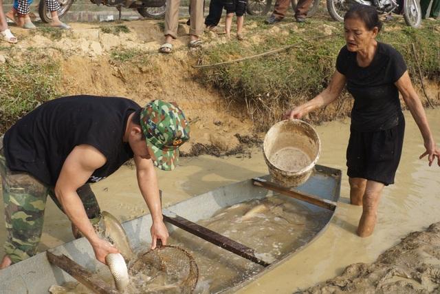 Giáp Tết, bội thu nhờ nuôi cá vụ 3 thay trồng lúa - 1