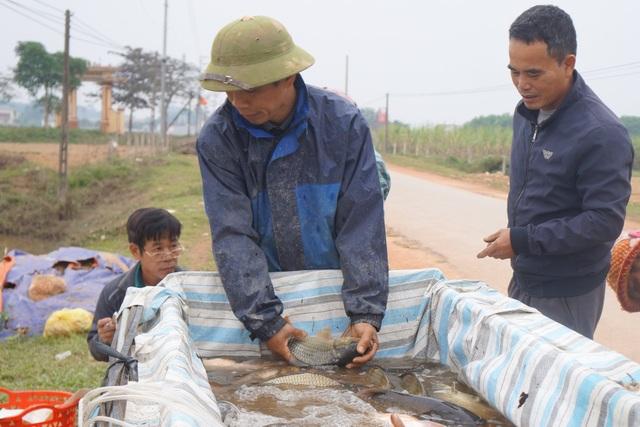 Giáp Tết, bội thu nhờ nuôi cá vụ 3 thay trồng lúa - 5