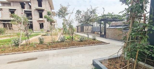 Biệt thự nuôi gà, trồng rau ngoại thành Hà Nội bất ngờ được thổi giá dựng ngược - 12