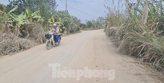 Biệt thự nuôi gà, trồng rau ngoại thành Hà Nội bất ngờ được thổi giá dựng ngược - 4