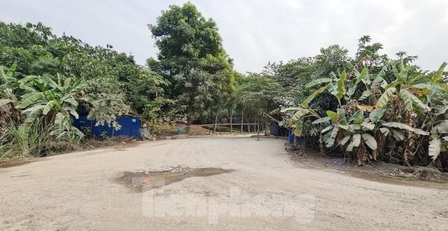 Biệt thự nuôi gà, trồng rau ngoại thành Hà Nội bất ngờ được thổi giá dựng ngược - 5